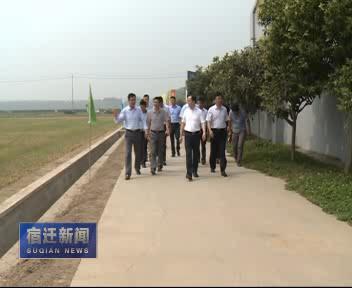 市领导赴湖滨新区调研新一轮农业结构调整情况