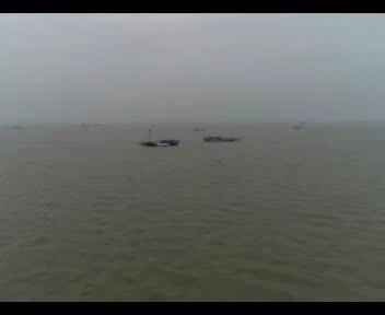 银鱼捕捞季:洪泽湖银鱼产业走出可持续发展之路