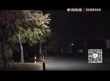 """直击""""双11""""(2):零点全记录 这个村庄电商彻夜未眠"""