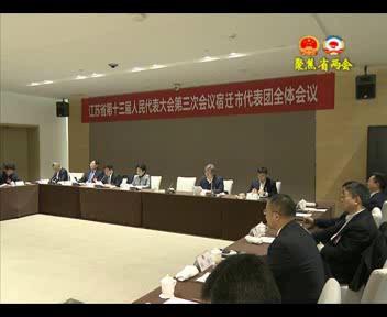 宿迁代表团举行第四次全体会议