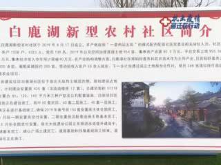 张爱军调研农房改善项目复工工作情况 扎实做好疫情防控 全力加快建设进